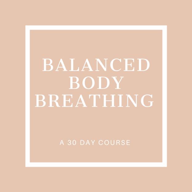 Balanced Body Breathing Icon